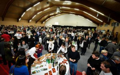 Salon VinDel 2020 PRELOŽEN